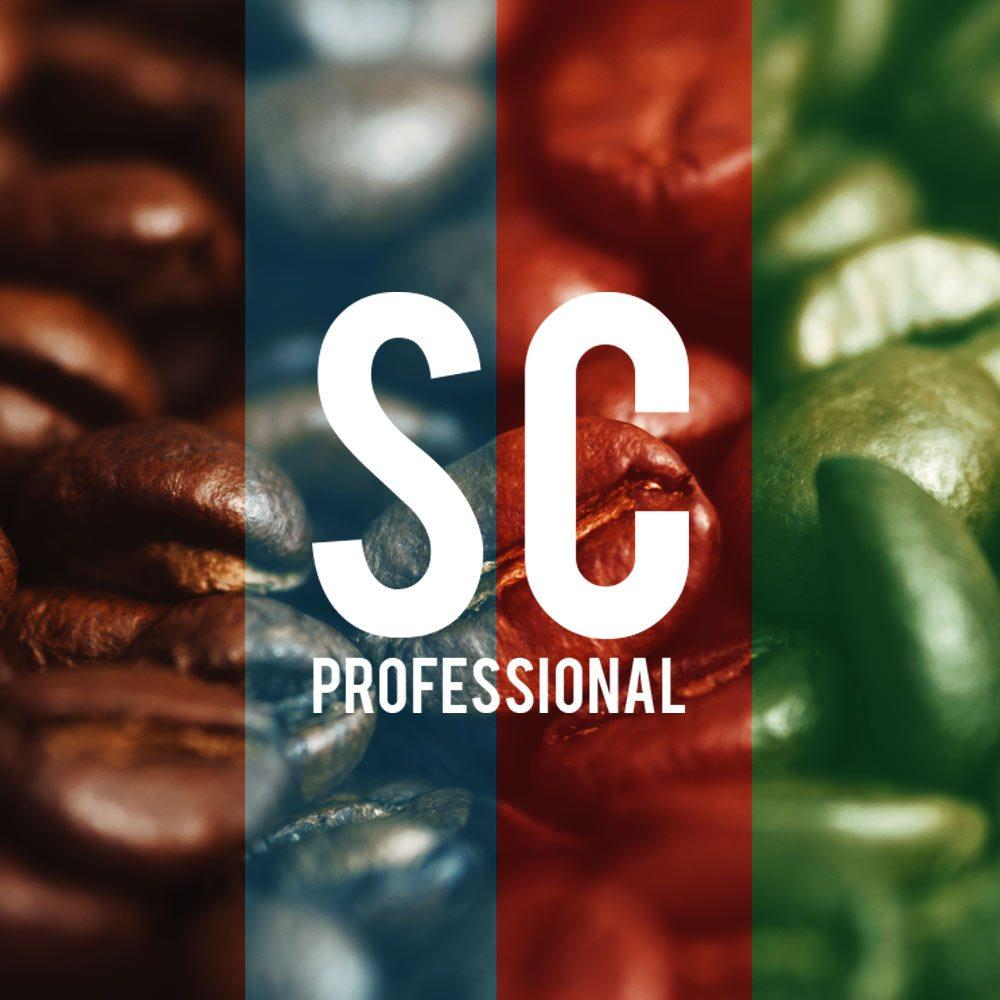 image-sc-professional_4