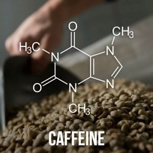 Decaffeinated coffee: the caffeine is extracted from the bean while it is still green