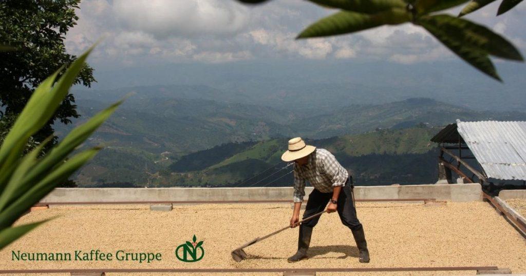 sostenibilità nel caffè